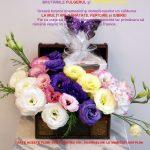 Felictitare 8 Martie Brutăriile FULGERUL și CUPTORUL DE AUR