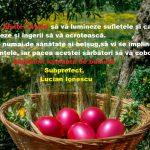 Felicitări Paște